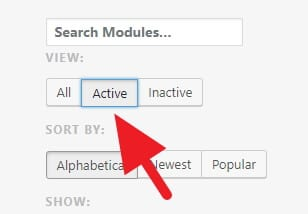 Active Modules - How to Make Jetpack Plugin Faster 11