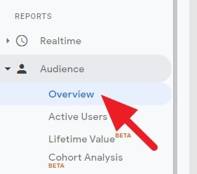 audience overview - How to Check Visitors Per Month on Google Analytics 7