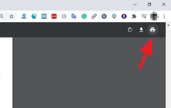 Print - How to Extract Certain Pages from PDF Using Google Chrome 7