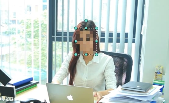 select face - How to Easily Blur / Censor Moving Face on Filmora PC 3