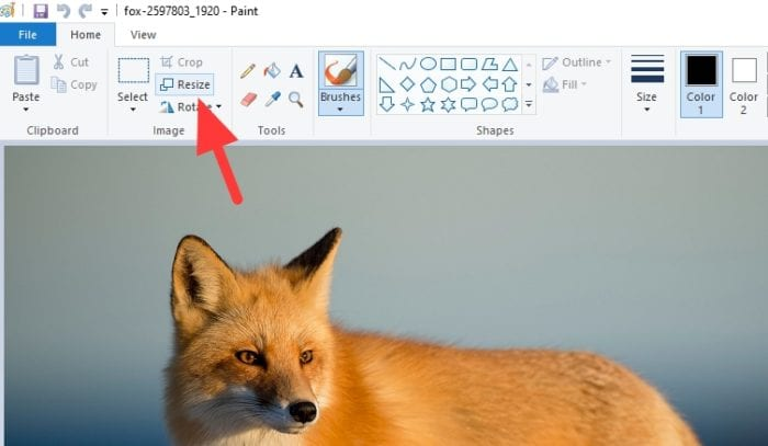 resize 1 - How to Resize a Picture on PC Without Third-Party App 7