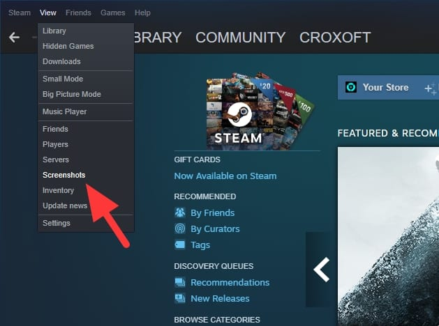 screenshots - How to Take Screenshot in Steam Games & Saved Automatically 11