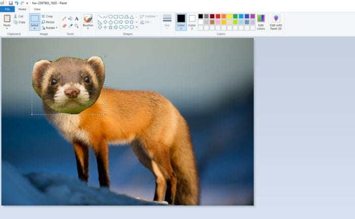 transparent image - How to Put a Transparent Image Over Another Image in Paint 17