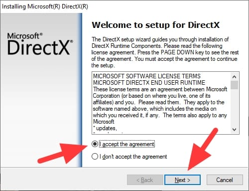 accept the agreement - How to Check What DirectX Version You Have on Your PC 13