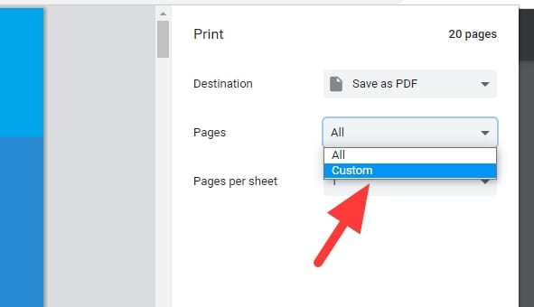 pages custom - How to Save One Single Page of a PDF Using Chrome 9