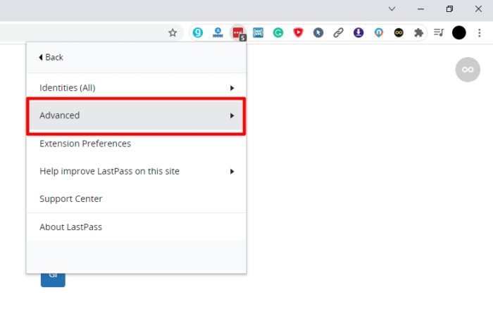 advanced 2 - How to Export Saved Passwords from Your LastPass Account 9